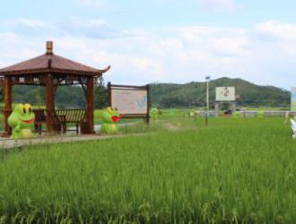 现代版硒遊纪构筑自然人文气息的蛙稻小镇